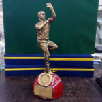 Main_Of_The_Match_Cup_Cricket