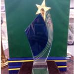 Star Glass Shield